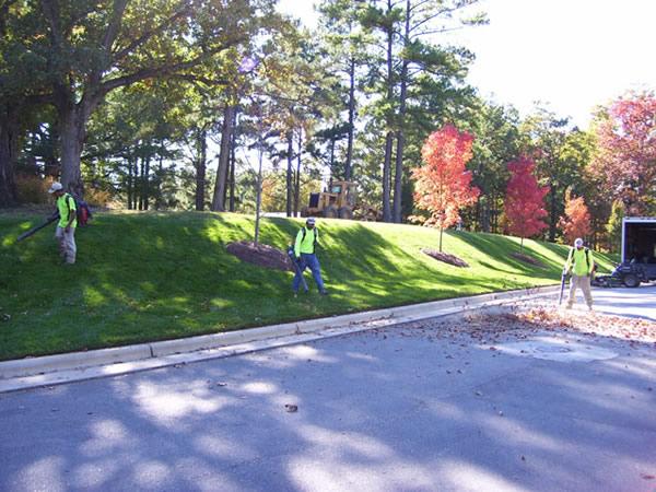 Landscaping Crew Hicks Landscape