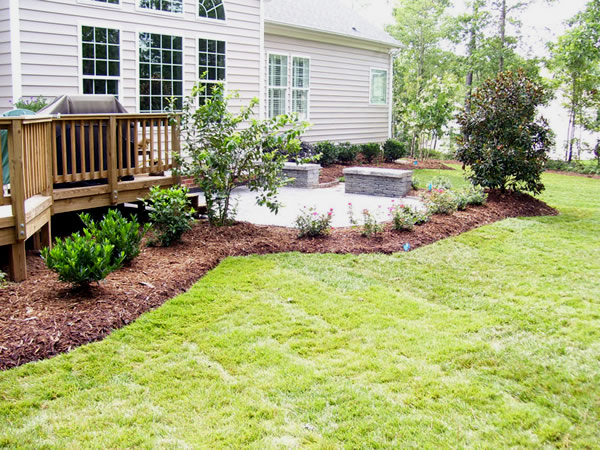 Back patio landscaping Raleigh