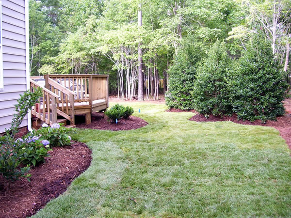 Raleigh backyard landscapers