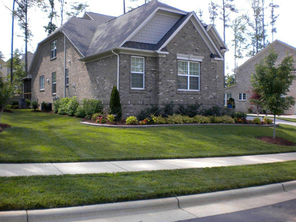 Raleigh Landscapers