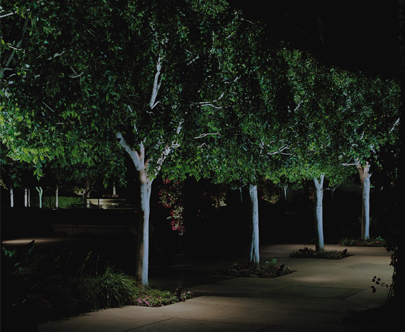 Raleigh commercial outdoor lighting