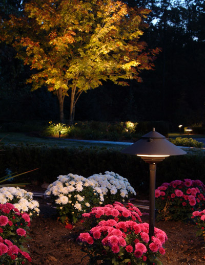 Outdoor garden lighting design